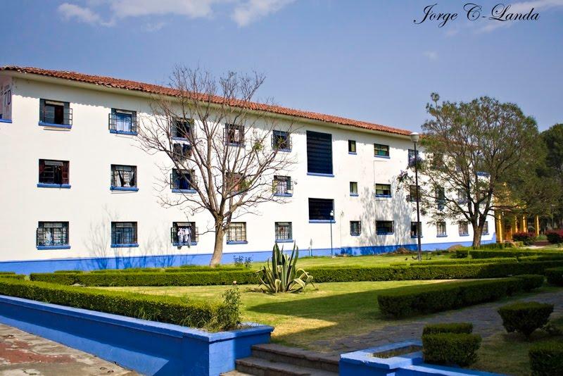 Caf estudio for Dormitorios de universidades