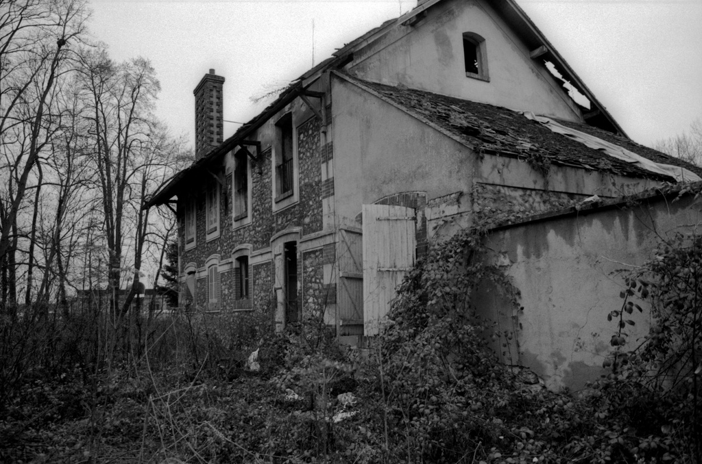 TratoHecho.com: Halloween y las casas embrujadas