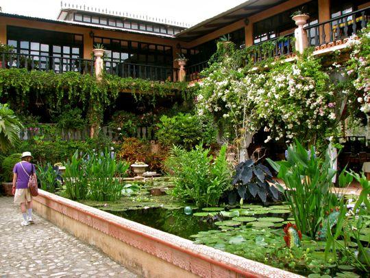 Bon Puerto Vallarta Part 5: Vallarta Botanical Garden