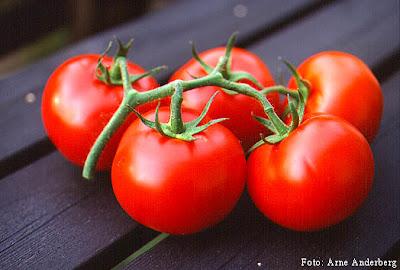 7 Alasan Anda Harus Makan Tomat [ www.BlogApaAja.com ]