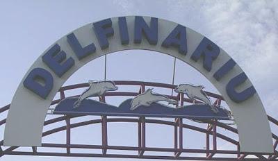 delfinariu-constanta-romania