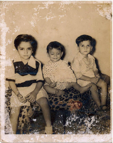 Three sons - Kapil (Pappu), Sajeev (Punnu) and Amir (Meeru)