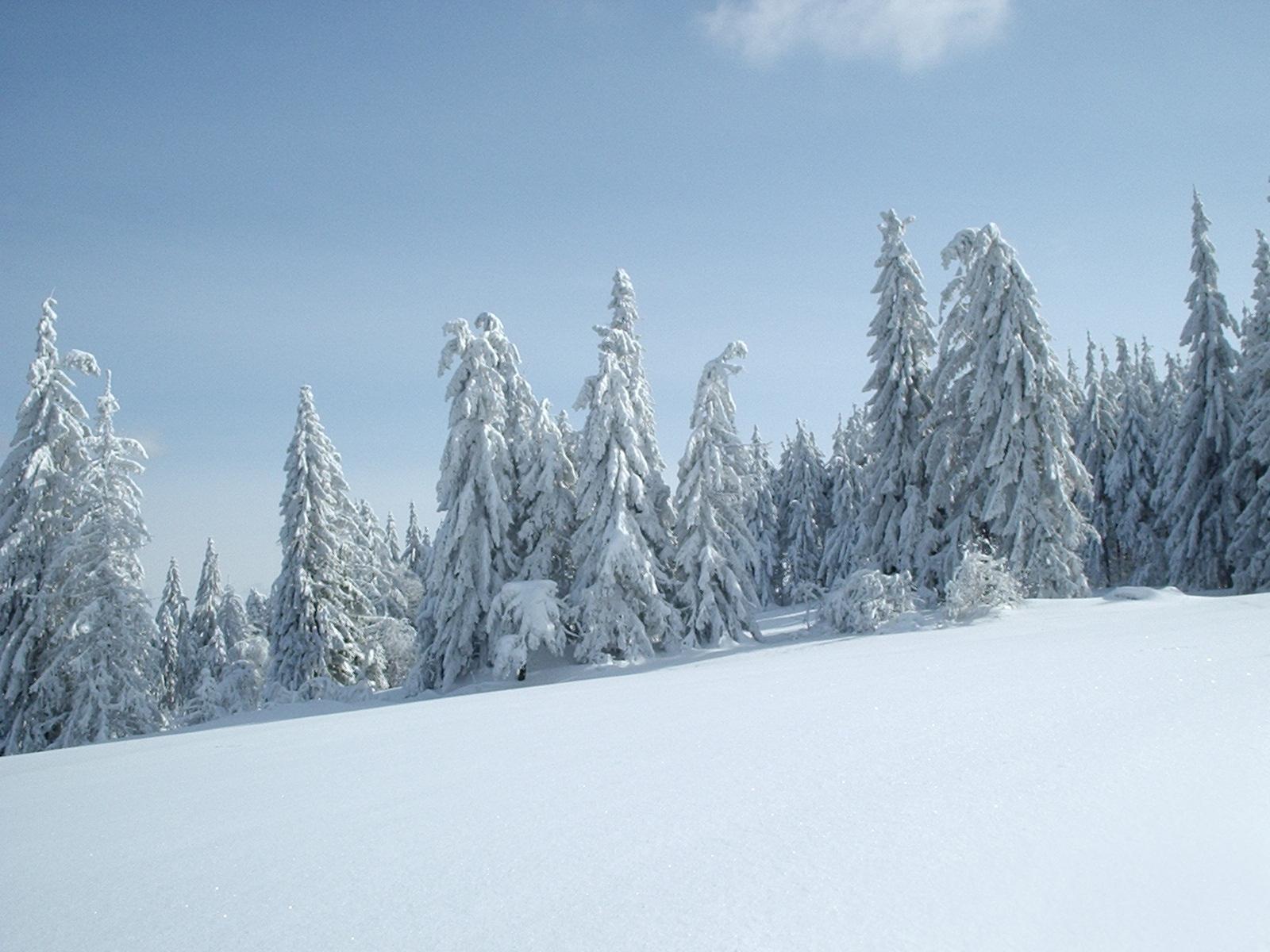 Winter Cincinnati Ohio