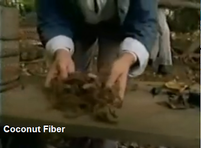 oak island coconut fiber dating It's believed that this coconut fiber was used as a kind um, tree dating on it to find out who will be the next victim of the curse of oak island.