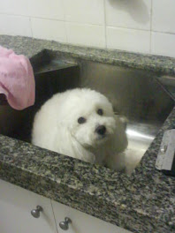 Esperando o banho
