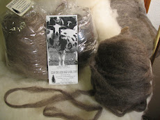 Jacob Sheep Wool