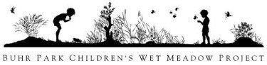 Buhr Park Children's Wet Meadow Project