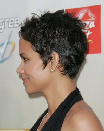 http://1.bp.blogspot.com/_ugIDnh24qvI/TFw0vqOsj9I/AAAAAAAAAo8/Dho-l-oqiUc/s1600/halle-berry-short-cropped-hairstyle-side-view-may-09.jpg