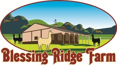 Blessing Ridge Farm - Alpacas