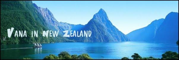 Blog sur la Nouvelle-Zélande et autres voyages!