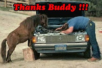 Buddy Thank You