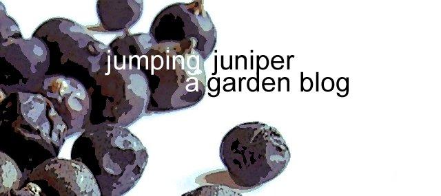 A Garden Blog