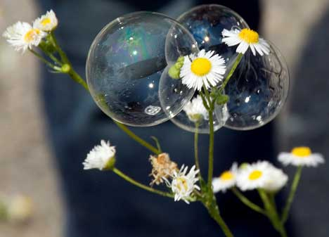 Bubbles in Nature
