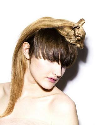 Saçlara hayvansı Şekiller ..