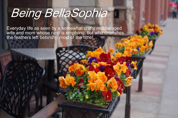 BeingBellaSophia