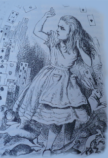 Alice Internetanschluss
