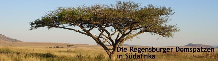 Die Regensburger Domspatzen in Südafrika