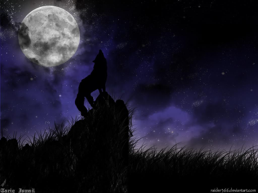 Wolfsun