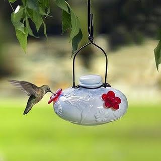 How To Make Natural Hummingbird Nectar