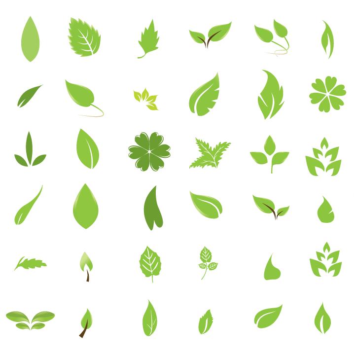 Vector pack: Hojas verdes