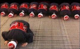 Gambar penghinaan terhadap Islam