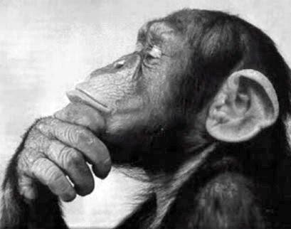 È nella natura umana pensare in modo saggio e agire stupidamente. (Anatole France)