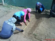 قسم الهندسة الزراعية