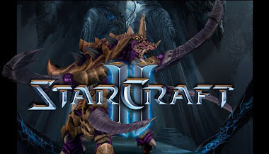 No LAN for StarCraft II