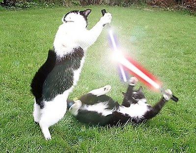 Bestias con armas Animales_armados_con_sables_laser