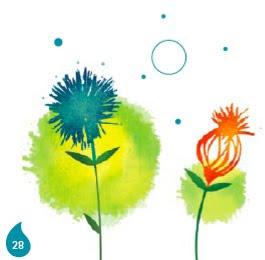 détail de fleur