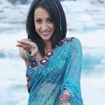 Trisha Krishnan in Saree  Spicy Pics