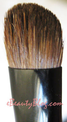 Essence of Beauty Shadow Brush