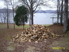 the camp woodpile
