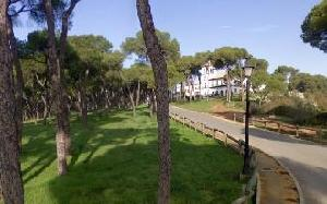 El blog de Alcalá de Guadaíra