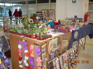 Stand de Ventas del Vivero en Supermercado Bigger Valdivia
