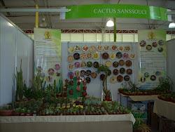 Expo Primavera 2010
