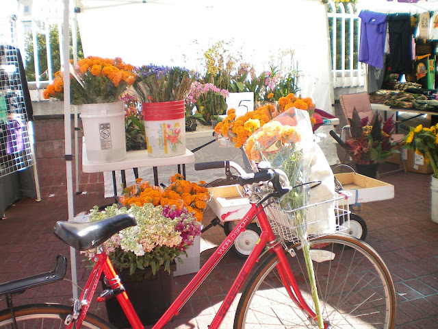 bikes and sf fresh produce