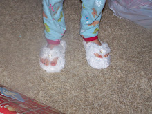Bella's new slippers.