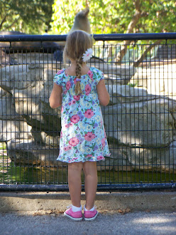Bella watching the Sea Lions.