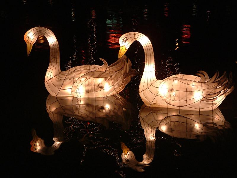 Hidden gems chinese lanterns