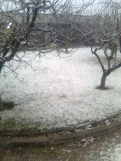 Neve em Viseu