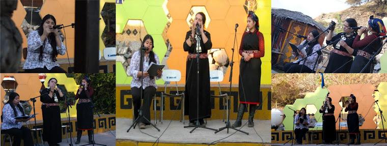 CELEBRACIÓN DE WIÑOL TRIPANTU EN APU WECHURABA  2010
