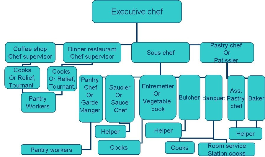 Modren Restaurant Kitchen Organization Chart For Small Hotel
