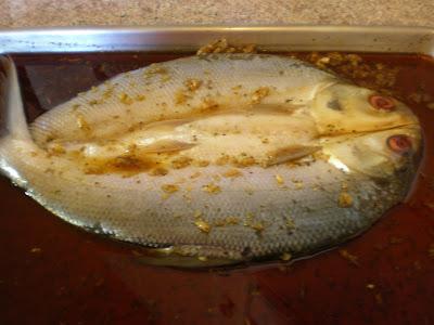 Bangus - Filipino Milkfish