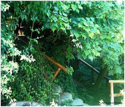 Mdq photography paisajes jard n de los sentidos for Jardin de los sentidos