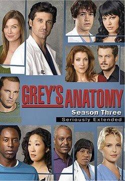 Baixar Grey's Anatomy 3ª Temporada Download Grátis