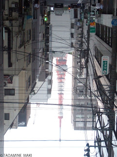 Tokyo Tower bound with wires, seen from between my legs