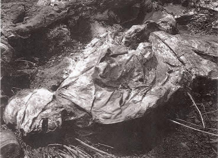 Srebrenica Genocide Blog: SREBRENICA NUMBERS (QUICK FACTS)