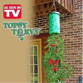 Hanging Tomatoe Garden