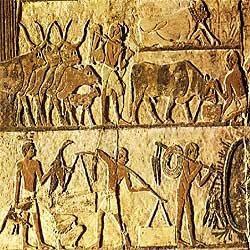 hicsos, israelitas, estudos biblicos, antigo testamento